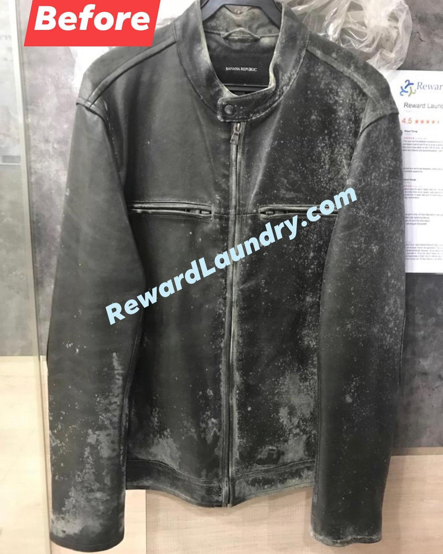 Leather Jacket Mould Removal Singapore