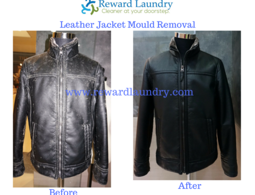 Mould Removal Service Singapore